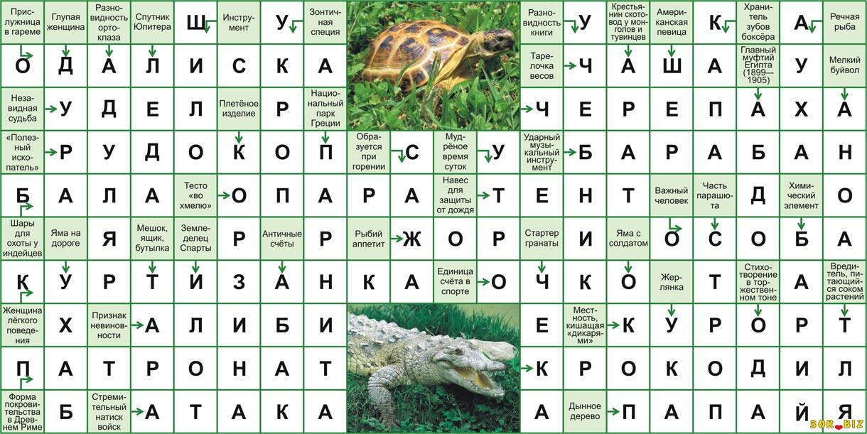Ответы на онлайн сканворд 20x10 р 26 Одалиска